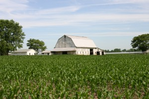 More than 100,000 acres of Delaware farmland permanently preserved