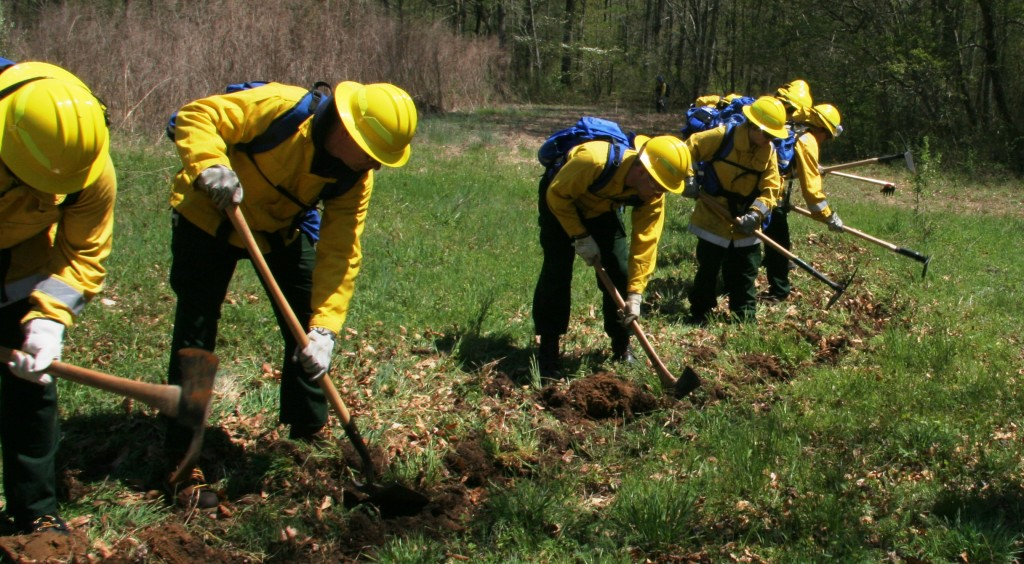 "One of the most important skills for a wildland fire crew is ""digging line,"" which involves using hand tools such as a pulaski to create a fire break to contain an advancing fire."
