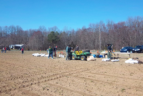 Tree Planting at Blackbird State Forest