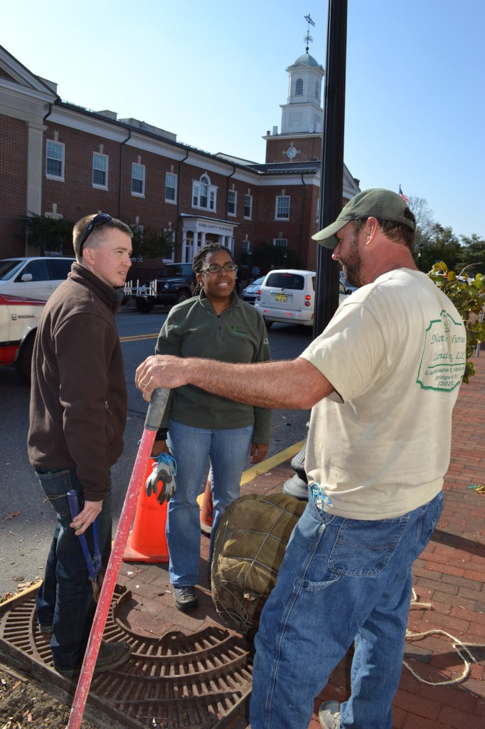 From left, the Delaware Forest Service's Kyle Hoyd and Kesha Braunskill discuss the Georgetown East Market Street improvement project with Mike Milligan of Bridgeville's Nanticoke Nursery and Landscaping, which provided the new trees and completed the planting operation.
