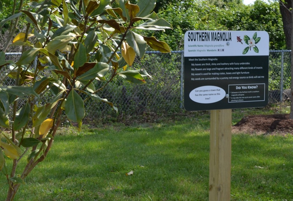 A sign in McIlvaine's new arboretum appears in four languages: English, Latin, Spanish, and Chinese.