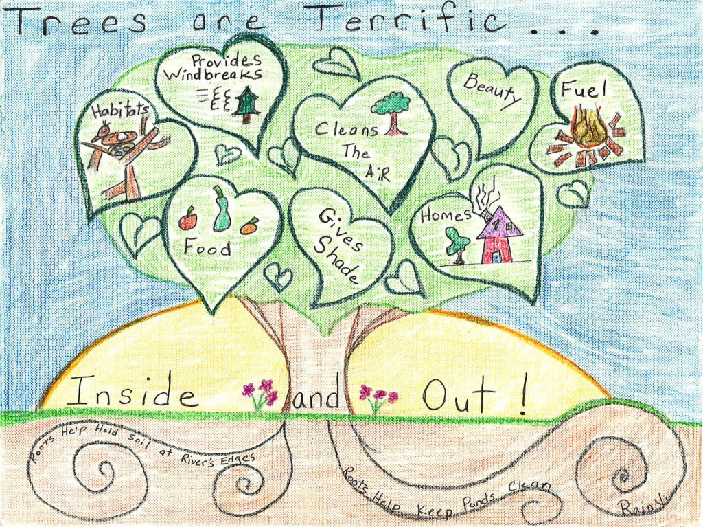 This poster by Rain Vasey of Sussex County was the Overall State Winner in the Delaware Forest Service's 2015 Arbor Day Poster Contest.