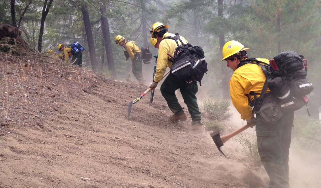 Starting second from left: Doug Rawling of Newark, Nicholas and Christopher Sturm of Hamburg, PA, and Jennifer DeCarlo of Felton construct a hand line as part of firefighting efforts on the Fork Complex, a 36,000-acre group of lightning-caused fires that burned near Hayfork, California last summer.