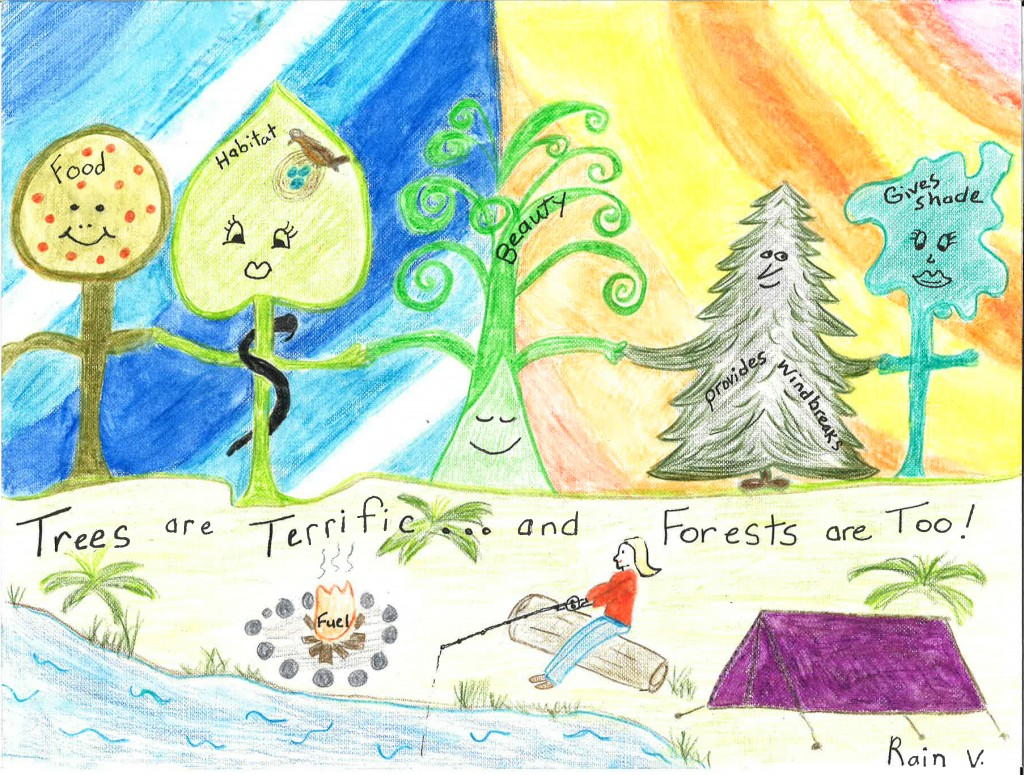 Rain Vasey, a 5th-grader at Water Girl Farm Academy in Lincoln, is the winner of the Delaware Forest Service's 2016 Arbor Day School Poster Contest.