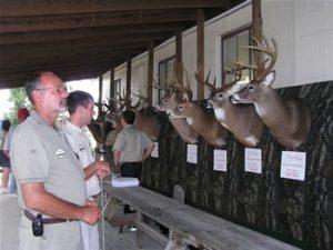 Viewing Record Deer Trophies