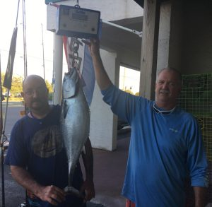 State record false albacore caught by Tim Parrill of Wellsville, Pa.