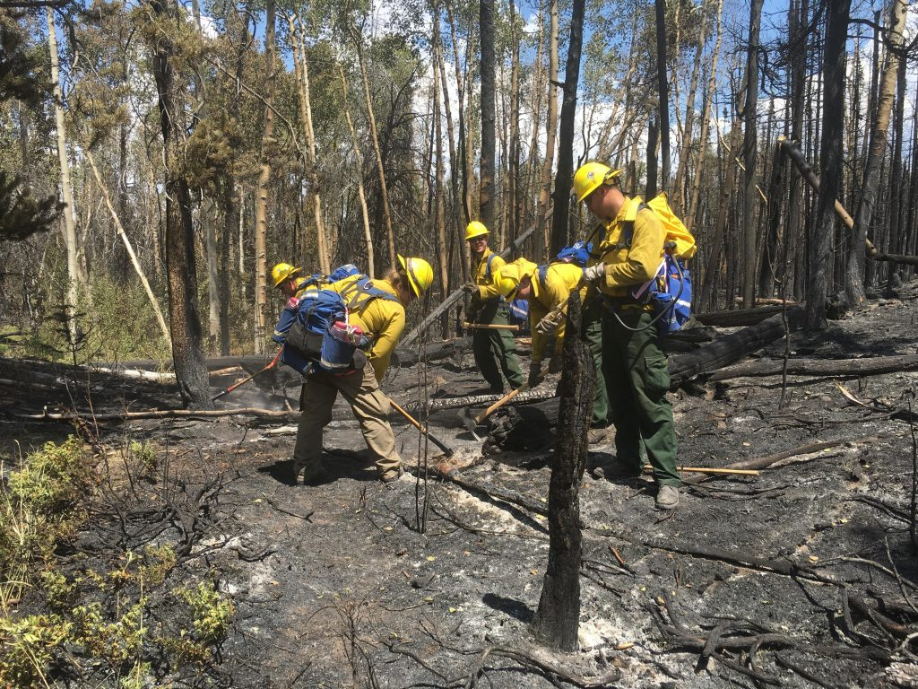 Delaware's wildfire crew on the Tokewanna Fire in southwest Wyoming: (left to right): Michael Krumrine, Laura Yowell, Daniel Mihok, Christopher Valenti, and Nathaniel Sommers,