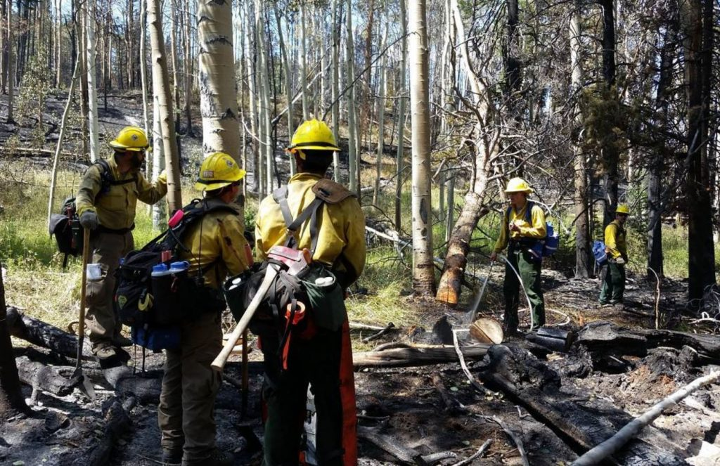 A photo of the Delaware wildfire crew on Wyoming's Tokewanna Fire was posted on Instagram today by crew representative Nikki Testa. Pictured are (from left to right) Todd Shaffer, Sam Topper, Daryl Trotman, Spencer Valenti, and Bart Wilson. Firefighters continue to make good progress on the fire. Crews are continuing to mop-up and remove hazard trees in and around structures in the Tokewanna Estates subdivision and beginning the process of back-hauling firefighting equipment from the area. (Photo by Nikki Testa, DFS)