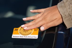 New annual parks pass adheres on the outside of a vehicle.