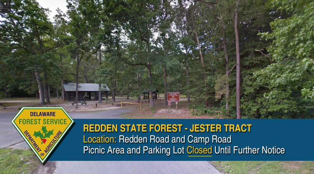 redden-picnic-closure