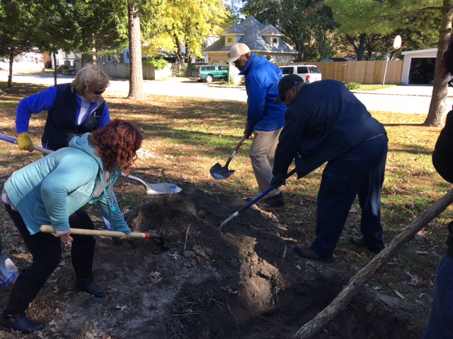 Tree planting at State Street Park in the Town of Delmar.