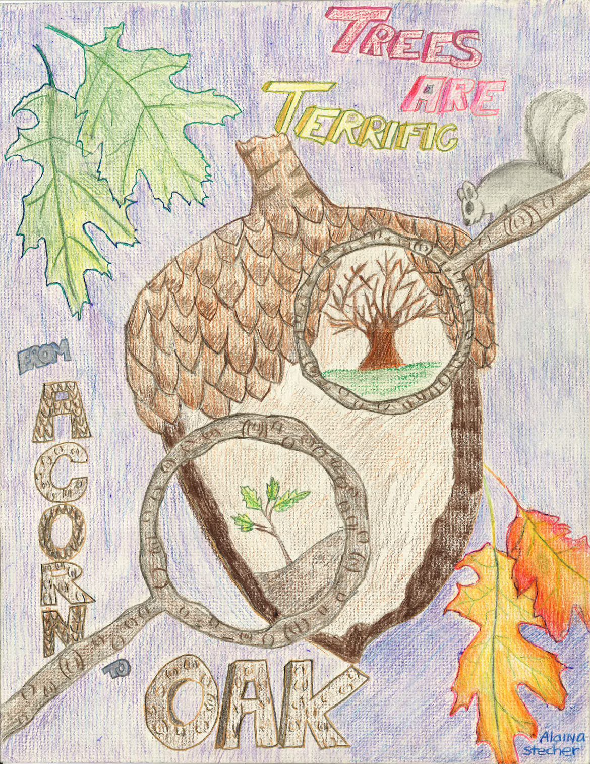 2017 poster contest delaware trees