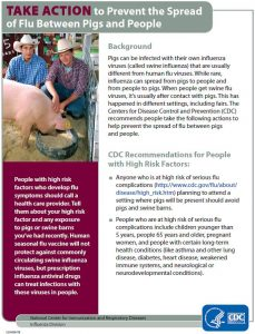 CDC flier on how to prevent the spread of flu between pigs and humans at fairs.
