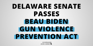 senate passes beau biden bill