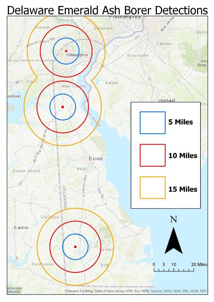Map of recent emerald ash borer detections in Delaware