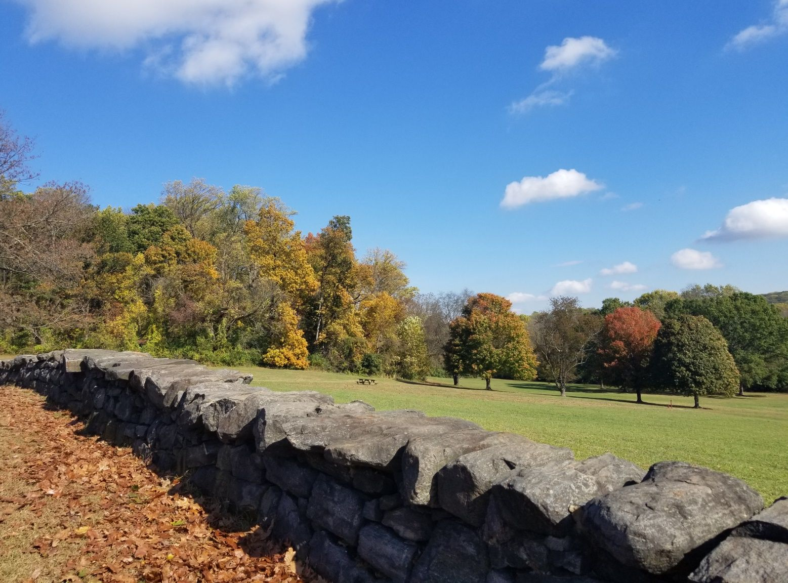 Fall in Brandywine Creek State Park