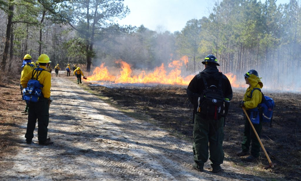 Controlled burn at Fire Camp