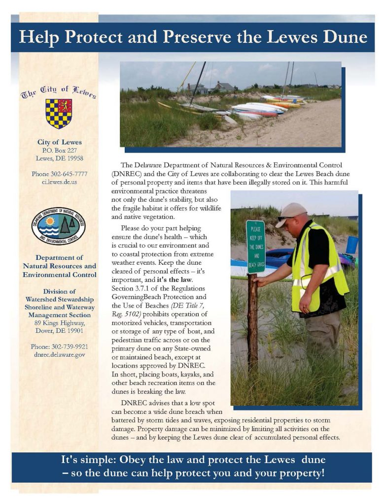 Lewes Dune Protection Flyer