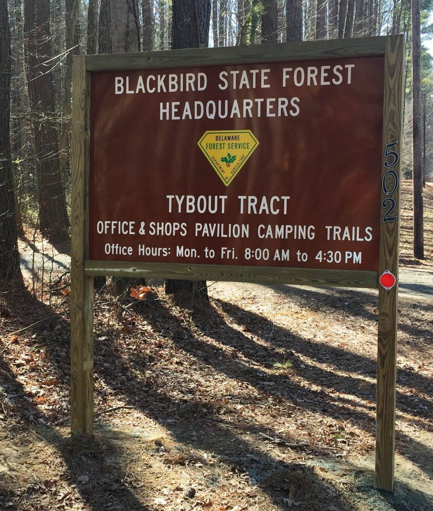 Blackbird State Forest