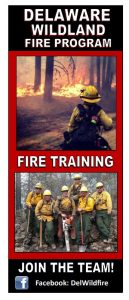 DFS Fire Brochure