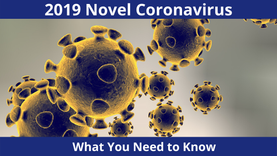 Coronavirus as seen under a microscope