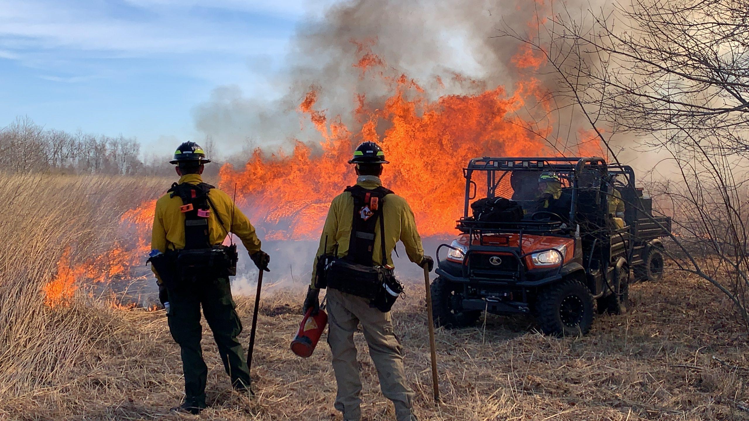 Delaware brush fire