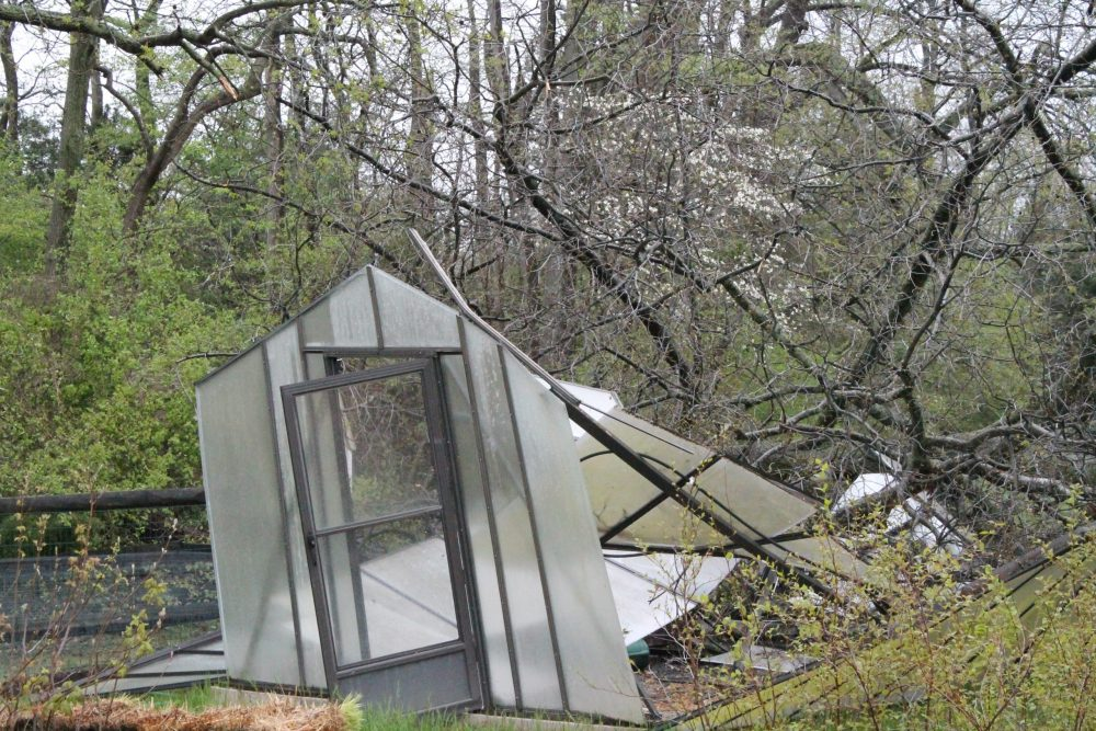 A small greenhouse was destroyed in the storm by a fallen tree. DNREC photo.