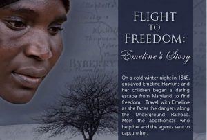 Flight to Freedom banner