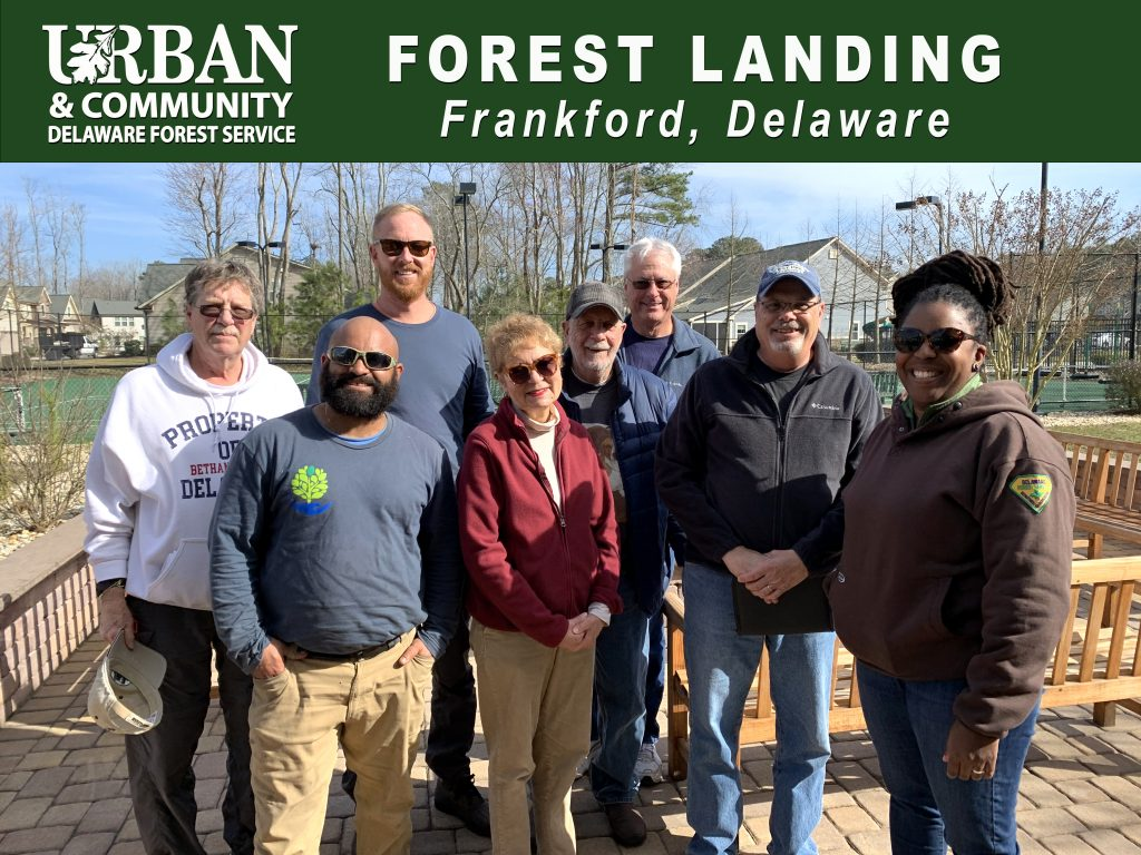 Forest Landing community forestry grant