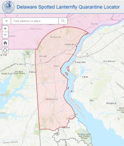 <span class='pullquote'>This map depicts New Castle County shaded in pink to show the spotted lanternfly quarantine as of July 1, 2020</span>