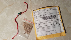 seeds, string bracelet, mailing package with Chinese writing