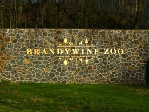 DNREC Announces Temporary Brandywine Zoo Weekday Closures