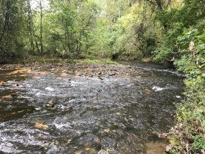 Red Clay Creek