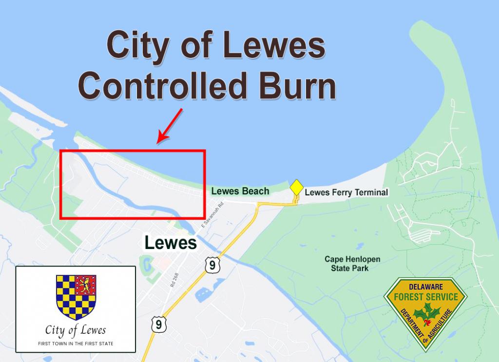 Lewes Rx Burn