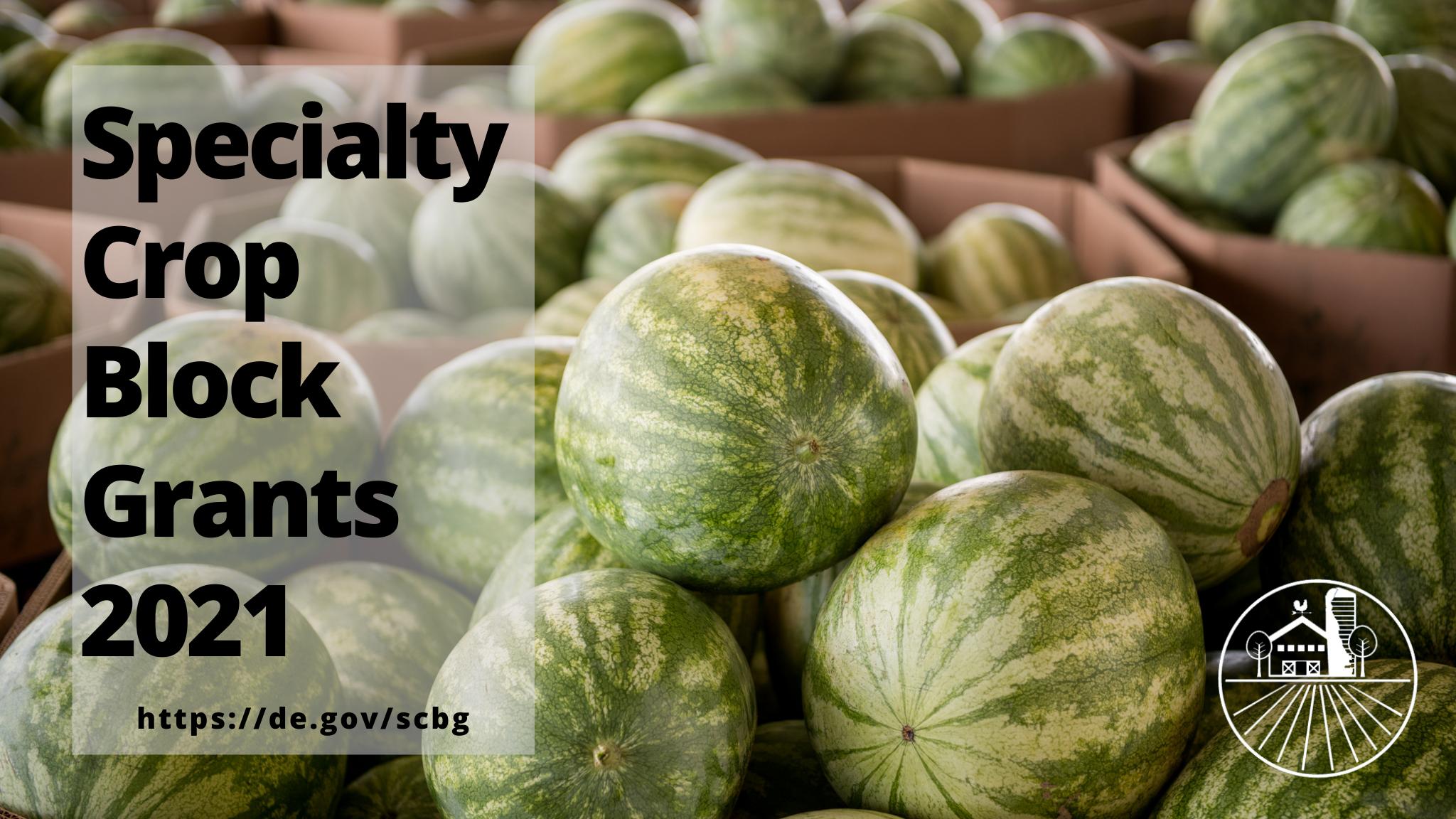 "Bins of Delaware Watermelon overlay with words"" Specialty Crop Block Grants 2021, Https://de.gov/scbg"" and the DDA logo"
